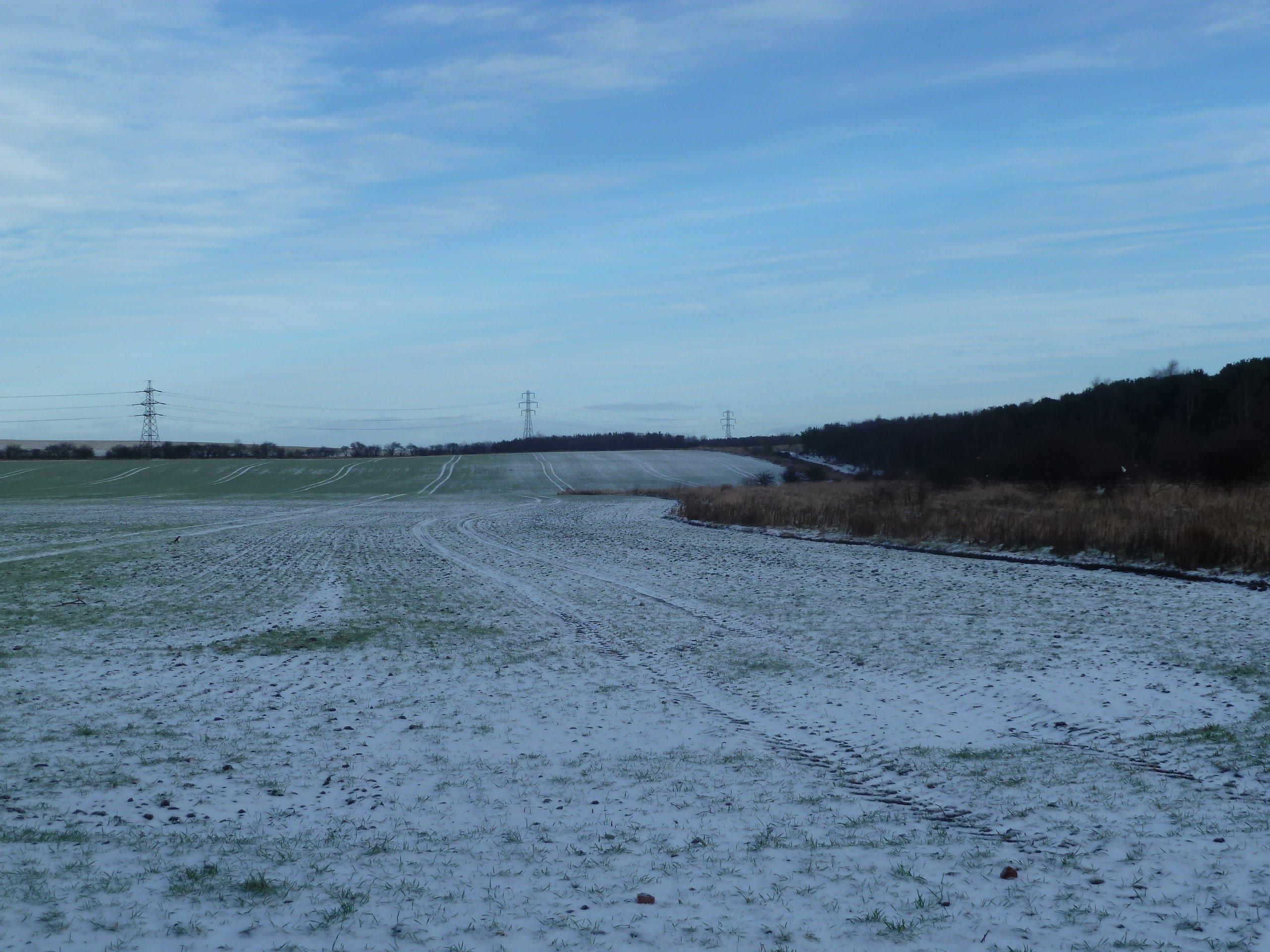 View across fields near Rising Sun Country Park