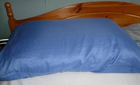 Slumberdown pillow