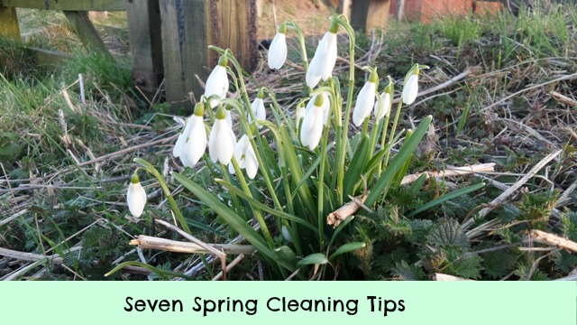 Seven Spring Cleaning Tips Dragons And Fairy Dust