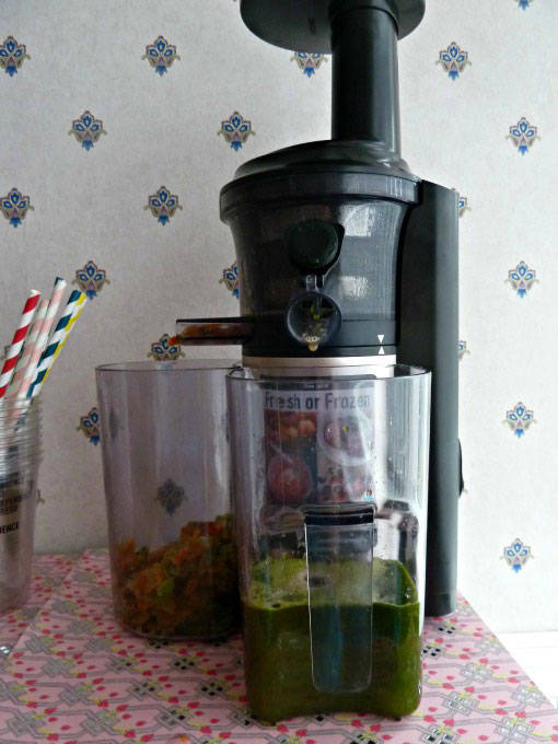 Panasonic Slow Juicer Recipe : Panasonic Slow Juicer Review and Recipes - Dragons and Fairy Dust