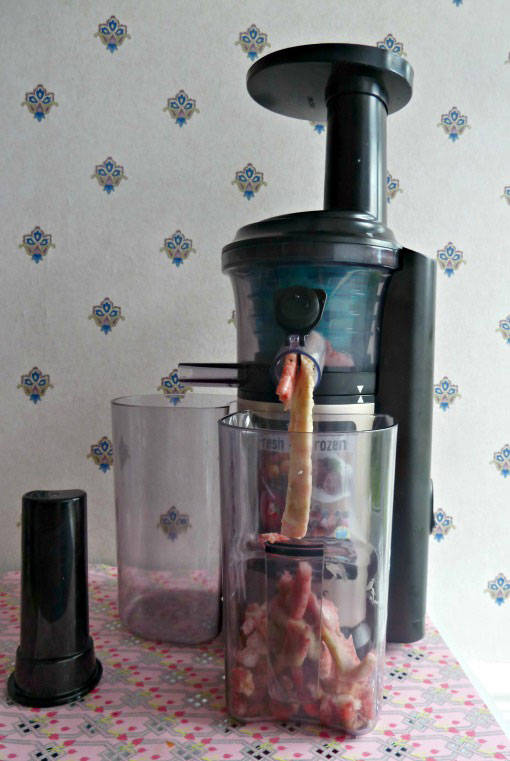 Panasonic Slow Juicer Review and Recipes - Dragons and Fairy Dust