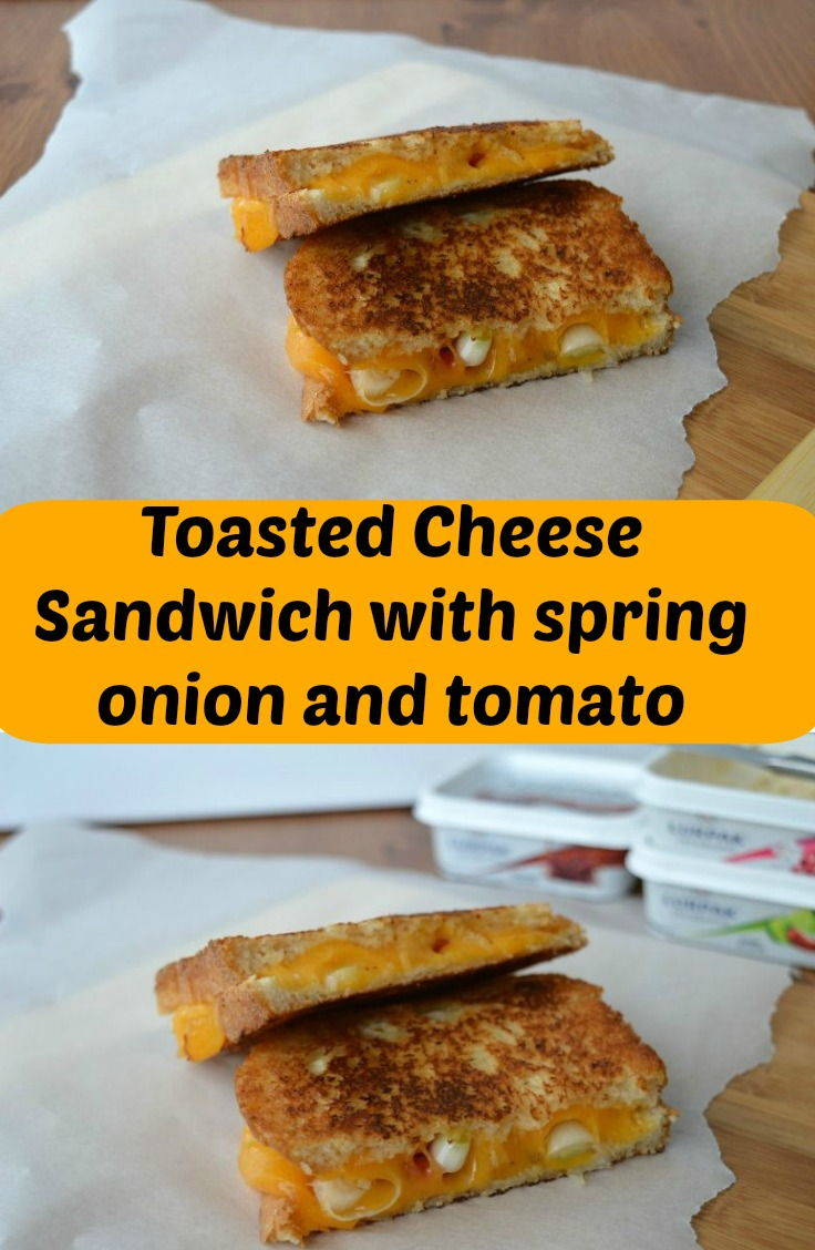 Toasted cheese sandwich with spring onions and tomato