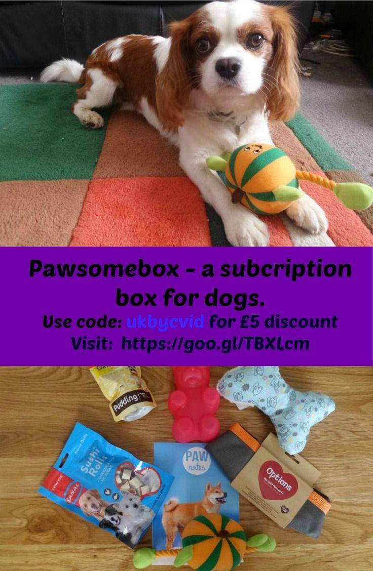 pawsomebox discount code