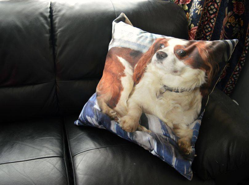 Personalised cushion from Mr Nutcase