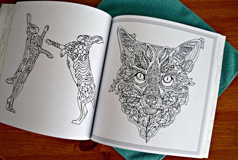 Derwent unwind in the wild colouring book