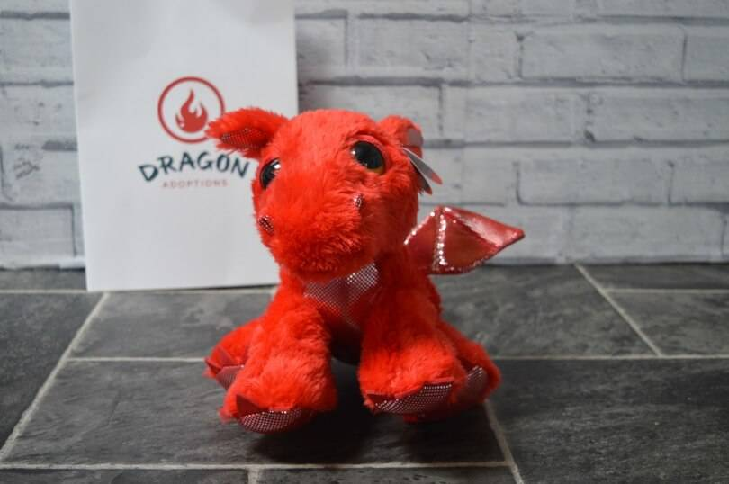 Adopting a Dragon with Dragon Adoptions