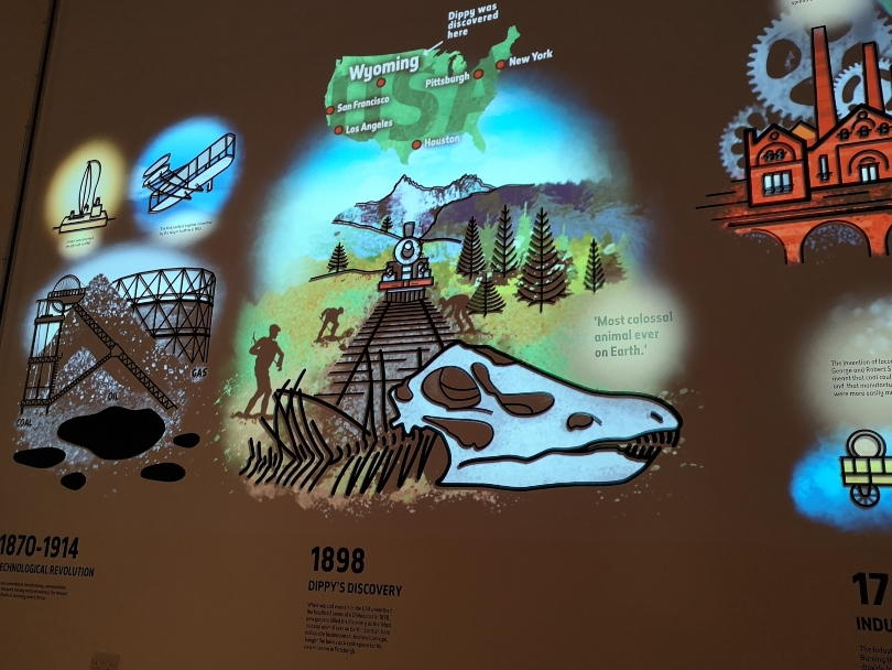Projections on the back wall of the Dippy on tour exhbition