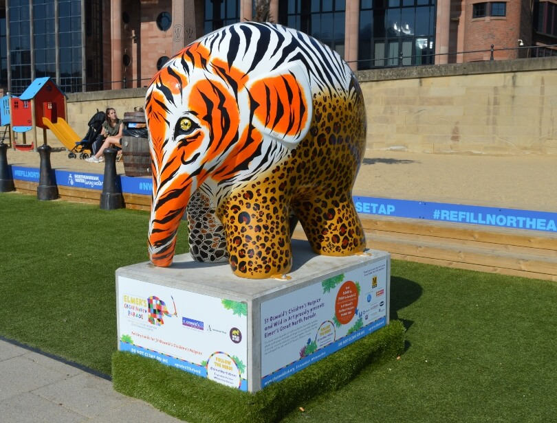 Elmer decorated with tiger and zebra stripes